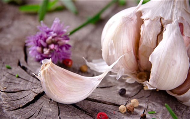 Αποτέλεσμα εικόνας για σκόρδο