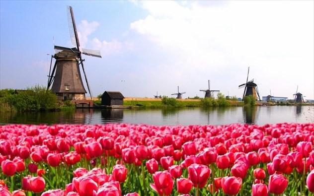 Αποτέλεσμα εικόνας για ολλανδια