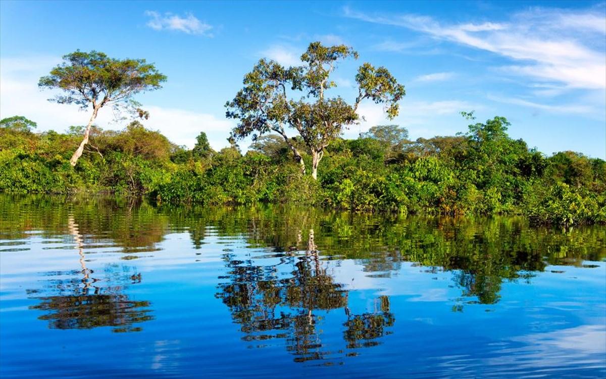 Αυτά τα ξέρατε για τον Αμαζόνιο; | clickatlife