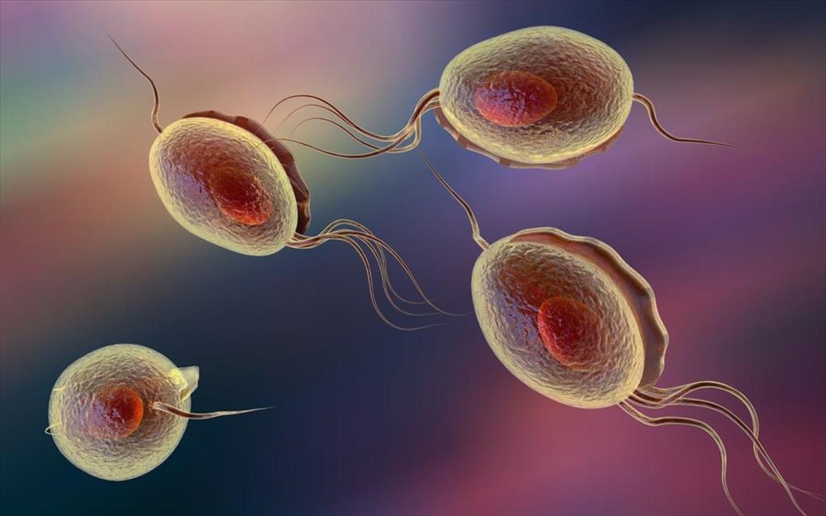 Τι είναι αυτό που προκαλεί υπογονιμότητα στον άνδρα και ποιες είναι οι  απαραίτητες εξετάσεις του σπέρματος που παίζουν ρόλο στην υπογονιμότητα c05bb4c8730